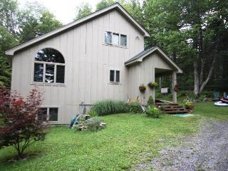 Cozy 3 bedroom House in Pittsfield - Pittsfield vacation rentals