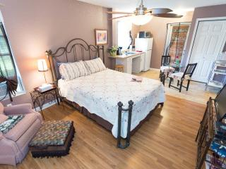 Garden Apartment-Spacious and Inviting Studio - Clearwater vacation rentals