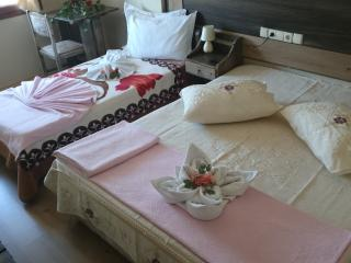 Nice 24 bedroom Resort in Selcuk - Selcuk vacation rentals