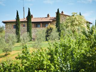 Podere Campaini - Villamagna vacation rentals