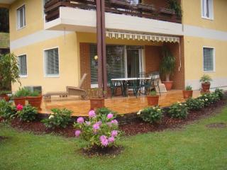Apartement Fritz - Villach vacation rentals