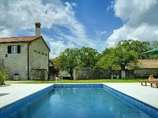 XXL Villa Adriano - Zminj vacation rentals
