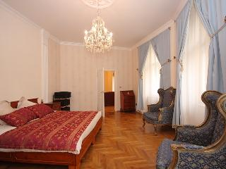 A bit of old-style luxury with the new in Prague - Prague vacation rentals
