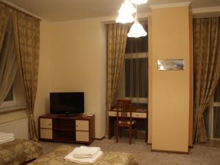 Comfort Twin Room - Kiev Oblast vacation rentals