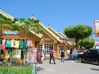 Drax Hall Country Club 24 Hrs Wi/Fi Near Ocho Rios - Ocho Rios vacation rentals