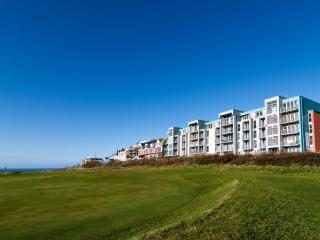 12 Zinc located in Newquay, Cornwall - Newquay vacation rentals