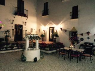 luxury  villa- formerly an olive farm - lake views - Iznajar vacation rentals