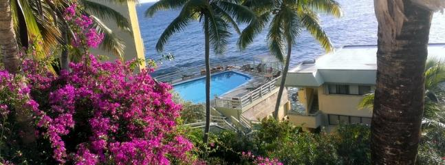 Oceanfront condo fully remodeled - Image 1 - Saint Thomas - rentals