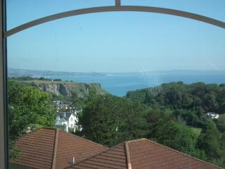 Luxury self catering holiday apartment in Torquay - Torquay vacation rentals