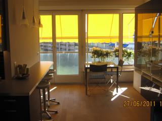 A jewel in Geneva center - Champel - Geneva vacation rentals