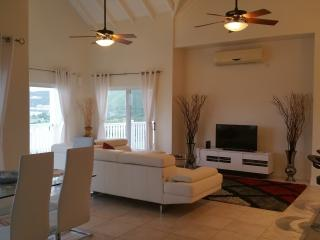 Stunning Views - Luxury New 2Bd Condo - Open Plan - Basseterre vacation rentals