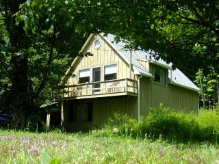 Ski Cottage in the Berkshire Hills - Stephentown vacation rentals