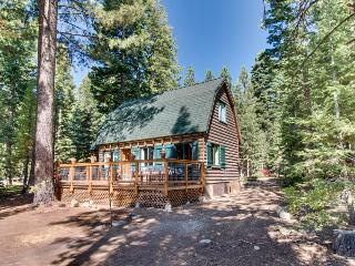 Rustic family cabin across the street from beach w/ home essentials - Carnelian Bay vacation rentals