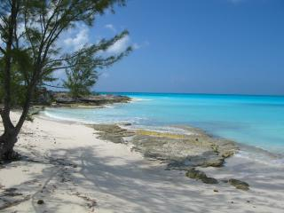 The Caribbean Blue Beach Estate in The Bahamas - Clarence Town vacation rentals