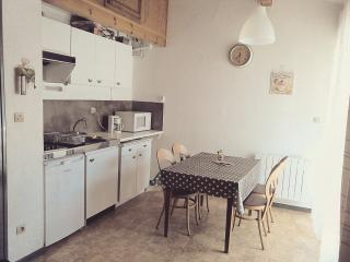 Studio mezzanine hyper centre Ax-les-Thermes 4pers - Ax-les-Thermes vacation rentals
