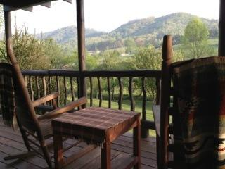 1 bedroom Cottage with Deck in Franklin - Franklin vacation rentals