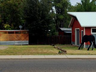 1 bedroom Guest house with Internet Access in Cottonwood - Cottonwood vacation rentals