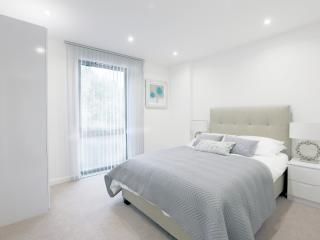 Central London Premium Apartment (Sleeps 8) - London vacation rentals
