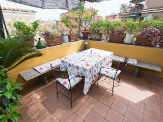 Flower Penthouse very close to Trastevere - Rome vacation rentals
