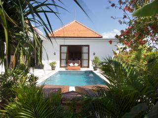 Villa Leon  2  Bedroom  Amazing Rice Field Views - Canggu vacation rentals