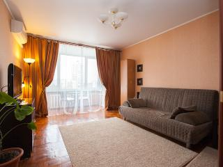 Bay window apartment, m.1905 Goda - Moscow vacation rentals