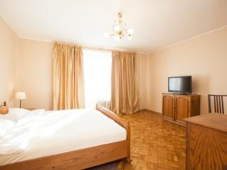 Two-room apartment 1905 goda - Moscow vacation rentals