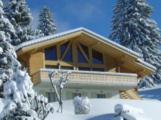 Luxury Modern Swiss Chalet - Villars-sur-Ollon vacation rentals