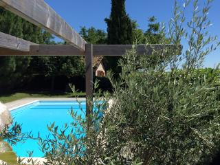 Holiday cottage with pool near Rabastens France - Rabastens vacation rentals