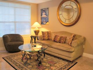 PERFECT JACUZZI  CONDO 1BD- NO STAIRS - Branson vacation rentals