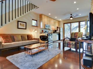 1 bedroom House with Internet Access in Austin - Austin vacation rentals