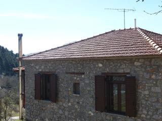 Mainalon Mountain-Traditional House - Stemnitsa vacation rentals