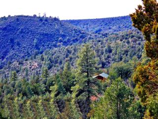 The Eagles Nest Hillside Retreat - Affordable Luxury In The Heart of Seclusion! - Payson vacation rentals