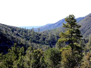 The Eagles Nest Hillside Retreat - Payson vacation rentals