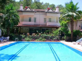 Elegant Villa Melissa -Private Pool 8x14mt -WiFi - Gocek vacation rentals