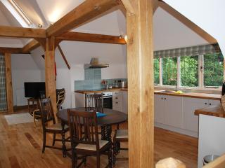 3 bedroom Apartment with Internet Access in Newport-on-Tay - Newport-on-Tay vacation rentals
