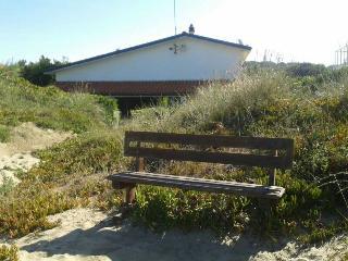 Nice Villa with Internet Access and Wireless Internet - Lido dei Pini vacation rentals