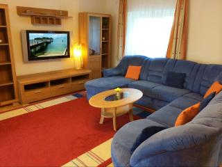 Linz Apartment Comfort-Size 120 m2 - Linz vacation rentals