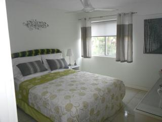 One Bedroomed Apartment in Ocho Rios, Jamaica - Ocho Rios vacation rentals