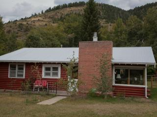 Perfect 3 bedroom Cabin in Salida - Salida vacation rentals