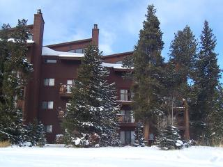 Affordable 3 Bdrm. Condo Wildernest- Silverthorne - Silverthorne vacation rentals