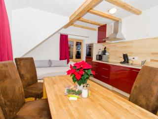 David Appartments - Mauterndorf vacation rentals