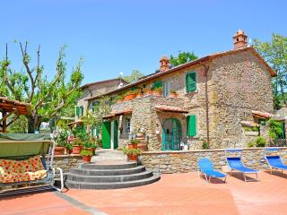 Villa Celeste-ideal for big groups and family - Cortona vacation rentals