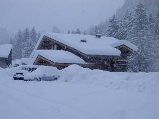 The most dramatic, spacious chalet in Morzine - Morzine-Avoriaz vacation rentals