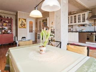 Home of Happiness, Historical Center - Saint Petersburg vacation rentals