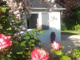 Cozy 1 bedroom Gite in Aubigny-sur-Nere with Internet Access - Aubigny-sur-Nere vacation rentals