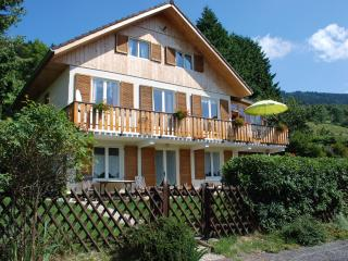 Cozy 2 bedroom Condo in Grand Massif with Internet Access - Grand Massif vacation rentals