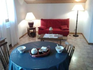 C/O PLACE Studio + sleeping corner 3 persons - Le Grand-Bornand vacation rentals