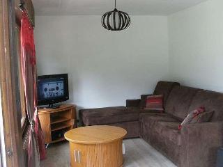 CARIBOU 2 rooms + mezzanine 6 persons - Le Grand-Bornand vacation rentals
