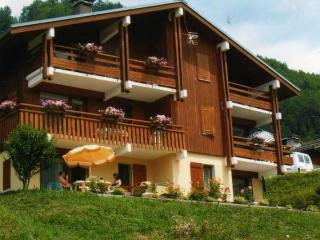 REGAIN 2 rooms + small bedroom 6 persons - Le Grand-Bornand vacation rentals
