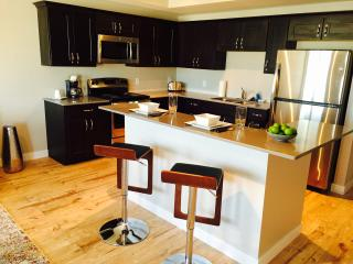 Downtown Cedar Falls Condo Brand New! - Cedar Falls vacation rentals